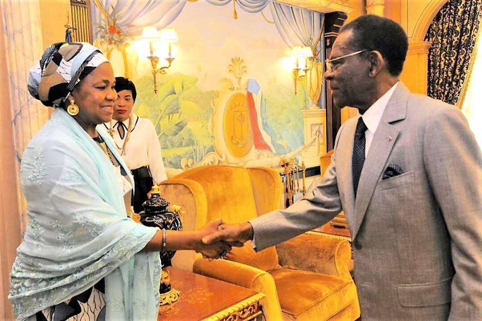 Dos delegaciones de África visitan al Presidente