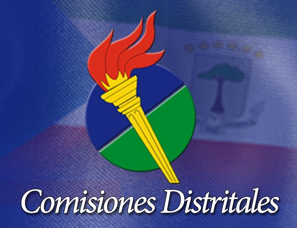 Resolución por la que se constituyen las Comisiones Distritales