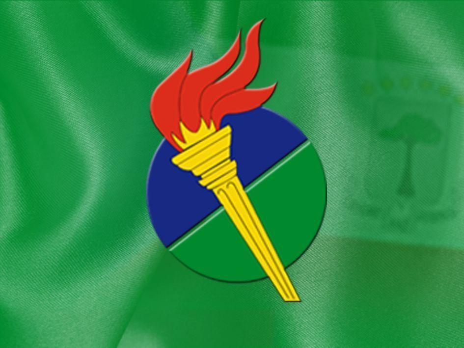 Resolución por la que se constituye el Comité Organizador del VI Congreso Nacional Ordinario del PDGE