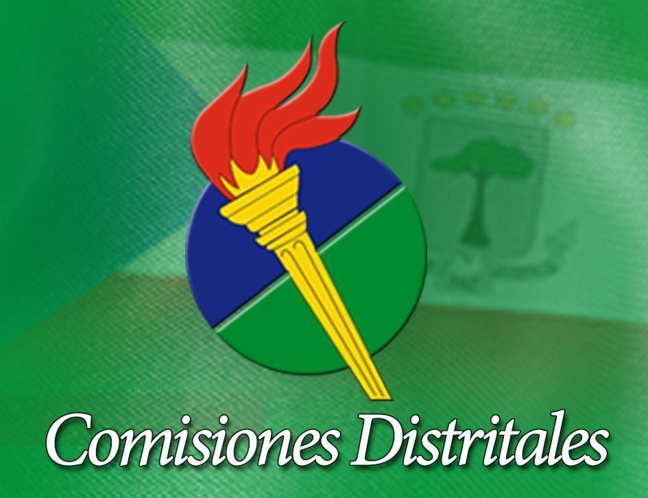 Resoluciones de nombramiento en la Comisión Distrital de Ebebiyin y en el Consejo Distrital de Micomiseng